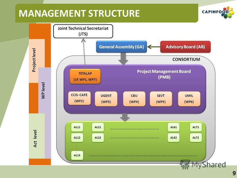9 MANAGEMENT STRUCTURE