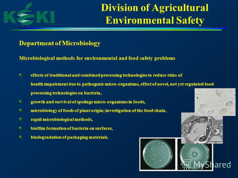 Division of Agricultural Environmental Safety Department of Microbiology Microbiological methods for environmental and food safety problems effects of traditional and combined processing technologies to reduce risks of health impairment due to pathog