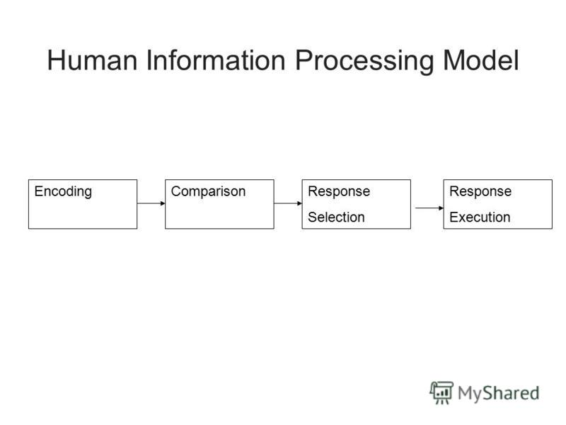 Human Information Processing Model EncodingComparisonResponse Selection Response Execution