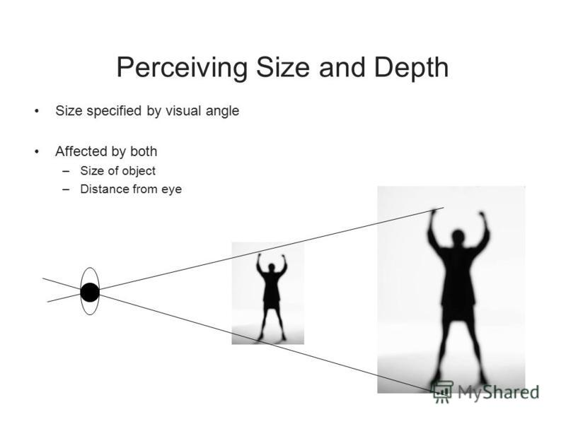 Perceiving Size and Depth Size specified by visual angle Affected by both –Size of object –Distance from eye