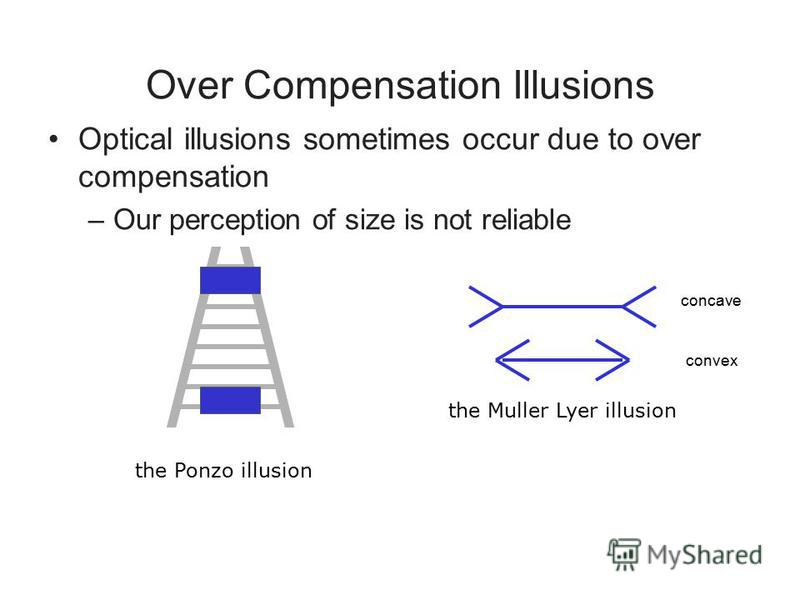 Over Compensation Illusions Optical illusions sometimes occur due to over compensation –Our perception of size is not reliable the Muller Lyer illusion the Ponzo illusion concave convex