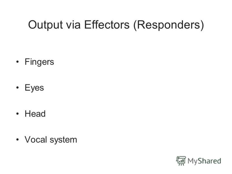 Output via Effectors (Responders) Fingers Eyes Head Vocal system