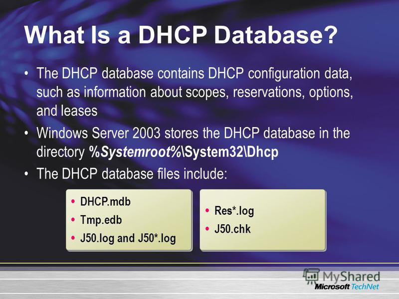 What Is a DHCP Database? The DHCP database contains DHCP configuration data, such as information about scopes, reservations, options, and leases Windows Server 2003 stores the DHCP database in the directory % Systemroot% \System32\Dhcp The DHCP datab