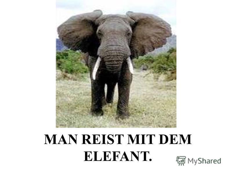 MAN REIST MIT DEM ELEFANT.