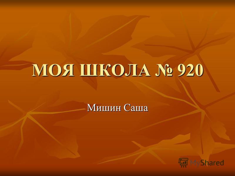МОЯ ШКОЛА 920 Мишин Саша