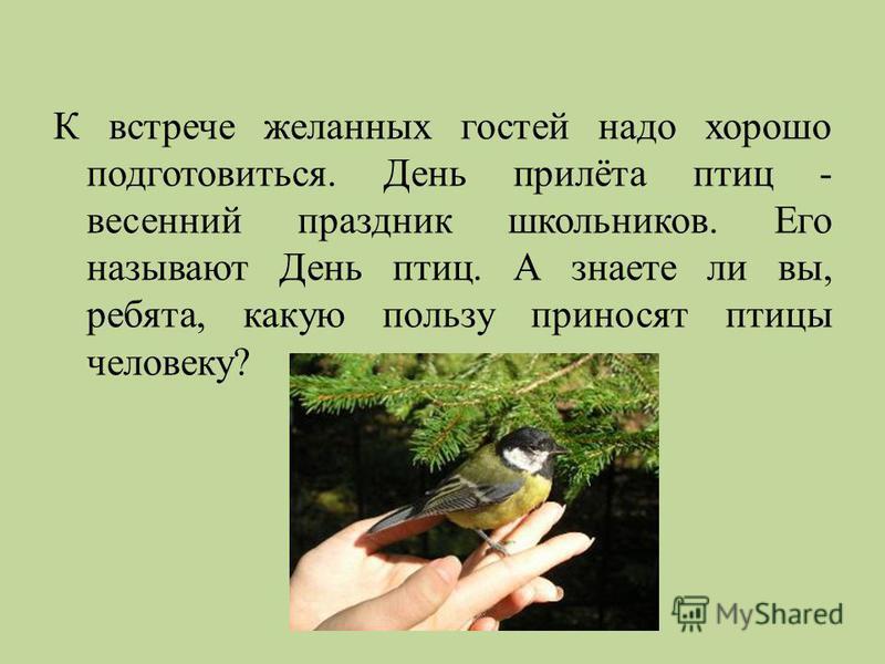 К встрече желанных гостей надо хорошо подготовиться. День прилёта птиц - весенний праздник школьников. Его называют День птиц. А знаете ли вы, ребята, какую пользу приносят птицы человеку ?