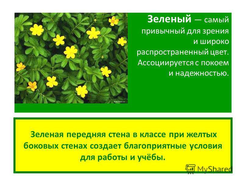 Зеленая передняя стена в классе при желтых боковых стенах создает благоприятные условия для работы и учёбы. Зеленый самый привычный для зрения и широко распространенный цвет. Ассоциируется с покоем и надежностью.