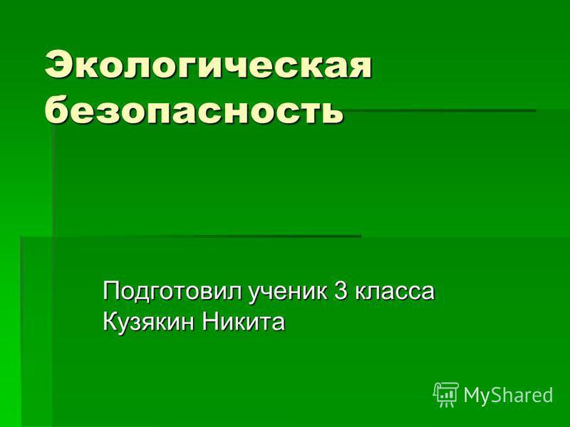 Экологическая безопасность Подготовил ученик 3 класса Кузякин Никита