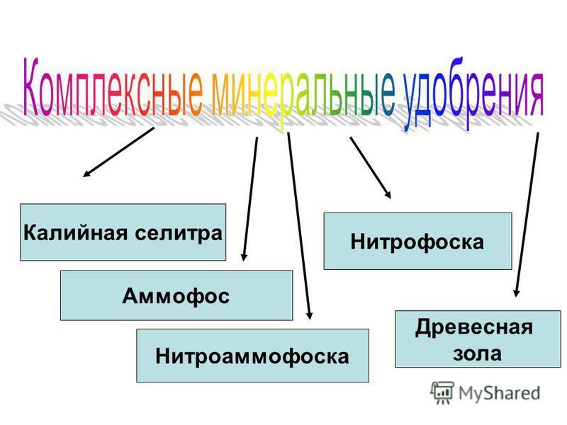 Калийная селитра Аммофос Нитрофоска Нитроаммофоска Древесная зола