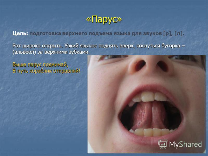 «Парус» Рот широко открыть. Узкий язычок поднять вверх, коснуться бугорка – (альвеол) за верхними зубками. Выше парус поднимай, В путь кораблик отправляй! Цель: подготовка верхнего подъема языка для звуков [р], [л]. Рот широко открыть. Узкий язычок п