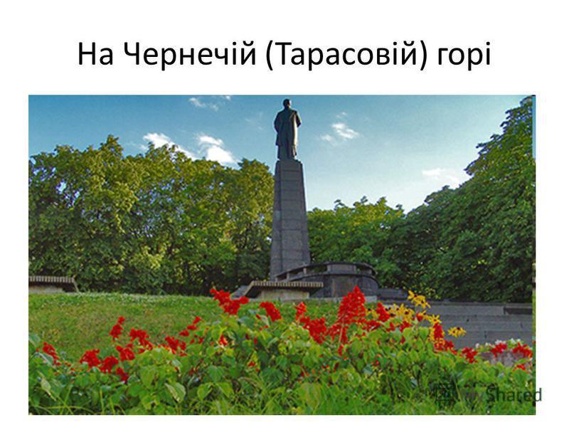 На Чернечій (Тарасовій) горі