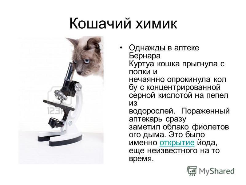 Кошачий химик Однажды в аптеке Бернара Куртуа кошка прыгнула с полки и нечаянно опрокинула кол бу с концентрированной серной кислотой на пепел из водорослей. Пораженный аптекарь сразу заметил облако фиолетов ого дыма. Это было именно открытие йода, е