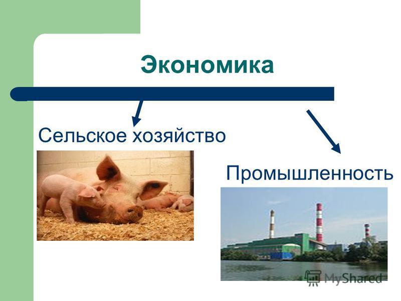 Экономика Сельское хозяйство Промышленность
