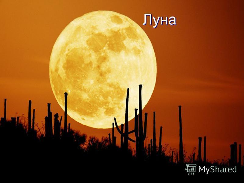 Луна Ночью на небе один Ночью на небе один Золотой апельсин. Золотой апельсин. Миновали две недели, Миновали две недели, Апельсина мы не ели, Апельсина мы не ели, Но осталось в небе только Но осталось в небе только Апельсиновая долька. Апельсиновая д