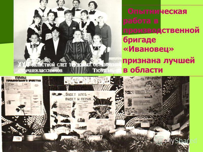 Опытническая работа в производственной бригаде «Ивановец» признана лучшей в области