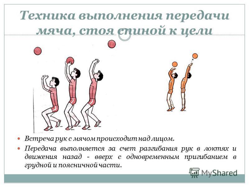 Техника выполнения передачи мяча, стоя спиной к цели Встреча рук с мячом происходит над лицом. Передача выполняется за счет разгибания рук в локтях и движения назад - вверх с одновременным пригибанием в грудной и поясничной части.