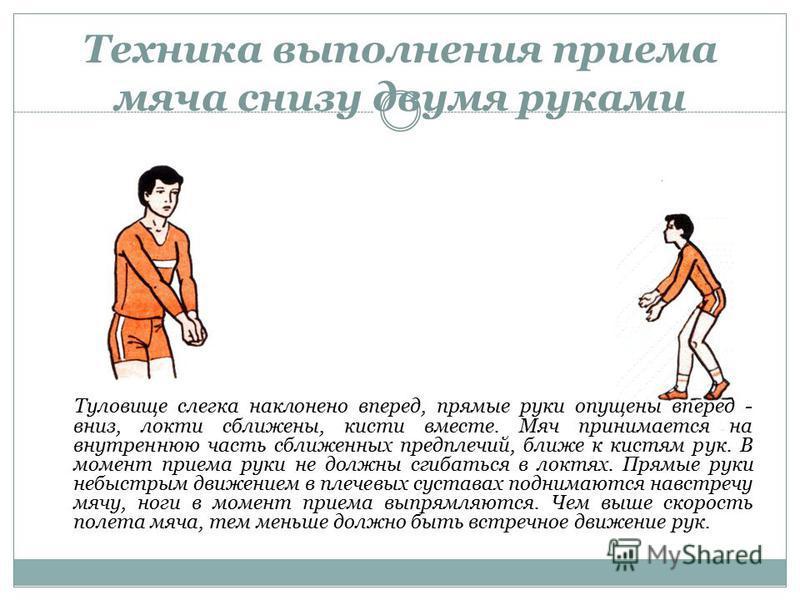Техника выполнения приема мяча снизу двумя руками Туловище слегка наклонено вперед, прямые руки опущены вперед - вниз, локти сближены, кисти вместе. Мяч принимается на внутреннюю часть сближенных предплечий, ближе к кистям рук. В момент приема руки н