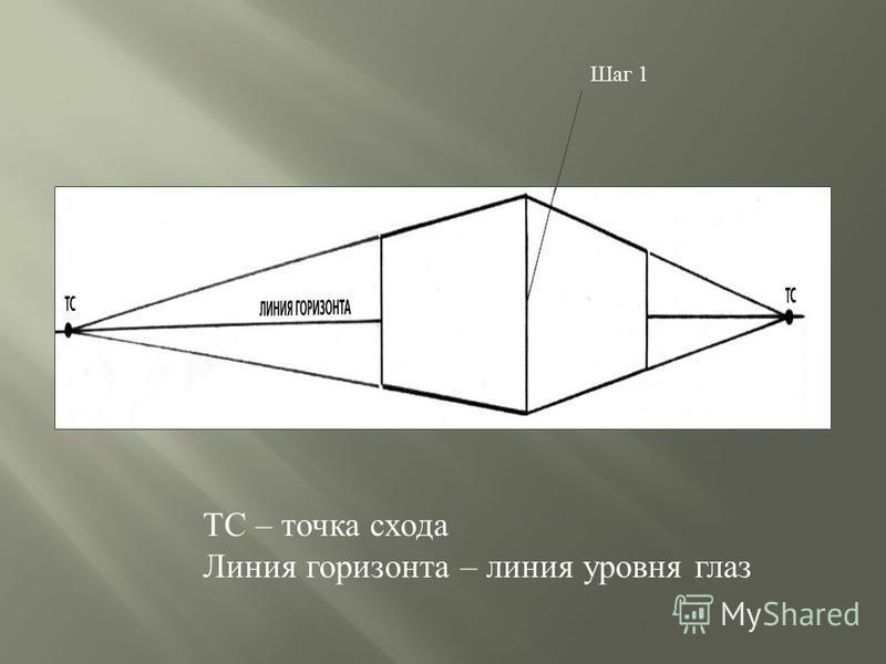 Шаг 1 ТС – точка схода Линия горизонта – линия уровня глаз