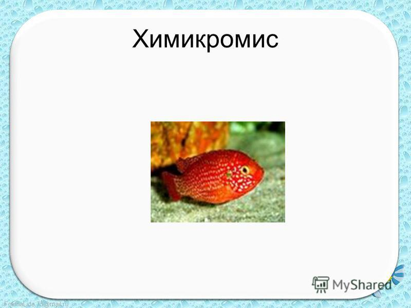 FokinaLida.75@mail.ru Химикромис