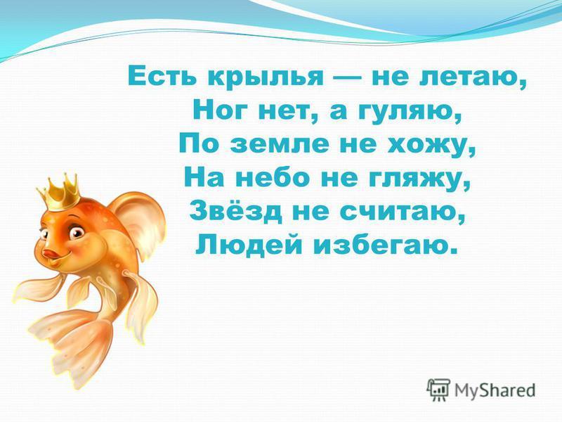 Есть крылья не летаю, Ног нет, а гуляю, По земле не хожу, На небо не гляжу, Звёзд не считаю, Людей избегаю.