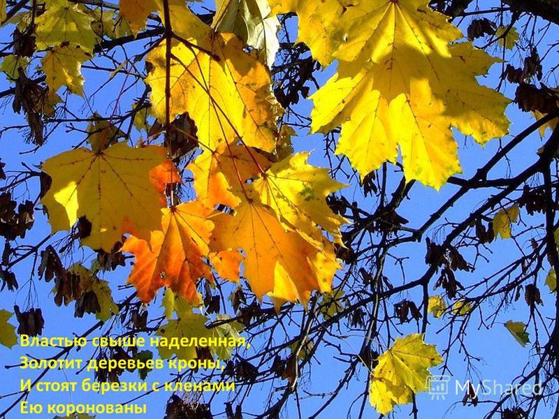 Властью свыше наделенная, Золотит деревьев кроны, И стоят березки с кленами Ею коронованы