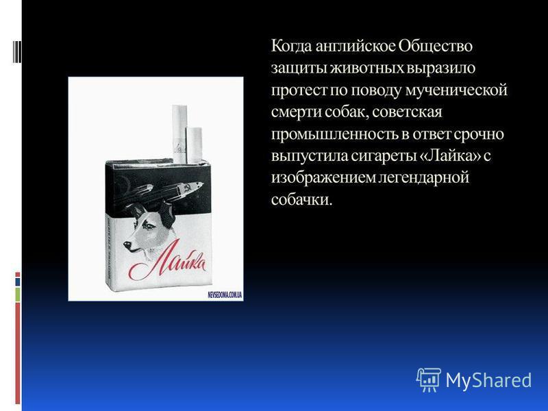 Когда английское Общество защиты животных выразило протест по поводу мученической смерти собак, советская промышленность в ответ срочно выпустила сигареты «Лайка» с изображением легендарной собачки.