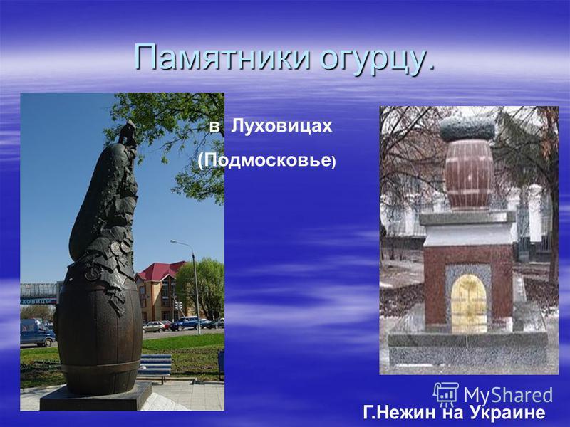 Памятник картошке установлен в Мариинске. Кемеровской области Памятник картошке установлен в Мариинске. Кемеровской области
