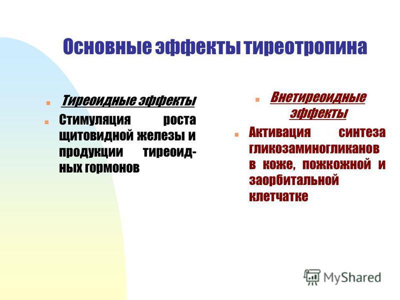 Основные эффекты тиреотропина n Тиреоидные эффекты n Стимуляция роста щитовидной железы и продукции тиреоидных гормонов n Внетиреоидные эффекты n Активация синтеза гликозаминогликанов в коже, подкожной и за орбитальной клетчатке