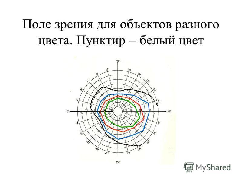 Поле зрения для объектов разного цвета. Пунктир – белый цвет