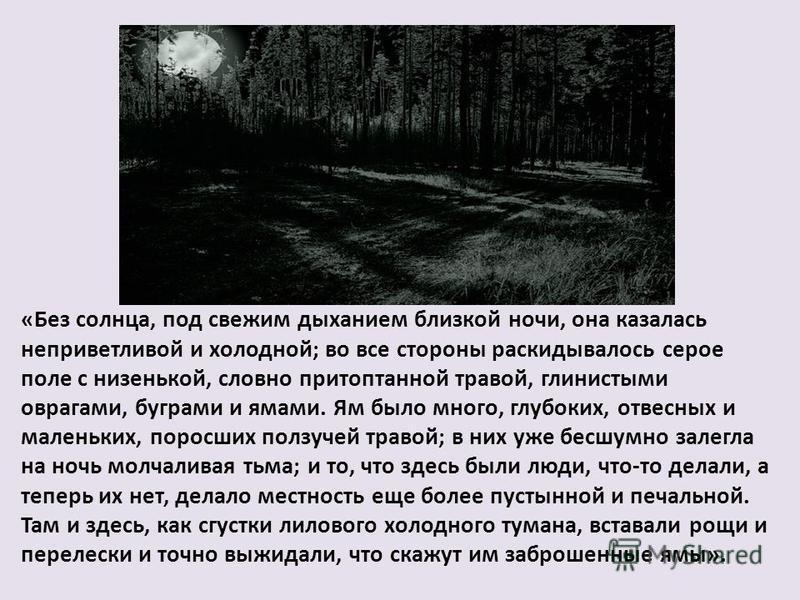 «Без солнца, под свежим дыханием близкой ночи, она казалась неприветливой и холодной; во все стороны раскидывалось серое поле с низенькой, словно притоптанной травой, глинистыми оврагами, буграми и ямами. Ям было много, глубоких, отвесных и маленьких