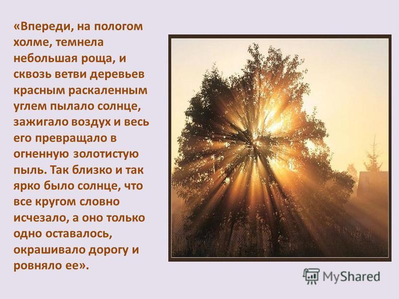 «Впереди, на пологом холме, темнела небольшая роща, и сквозь ветви деревьев красным раскаленным углем пылало солнце, зажигало воздух и весь его превращало в огненную золотистую пыль. Так близко и так ярко было солнце, что все кругом словно исчезало,