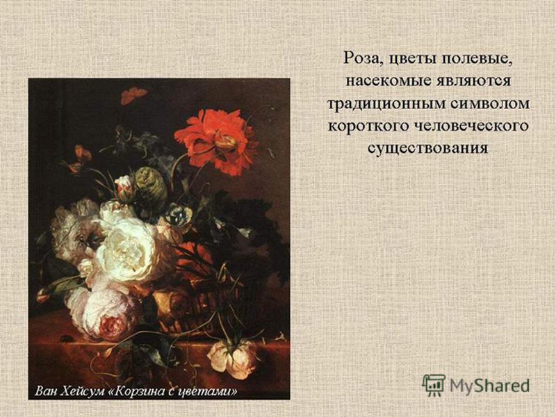 Роза, цветы полевые, насекомые - традиционный символ краткого человеческого существования.