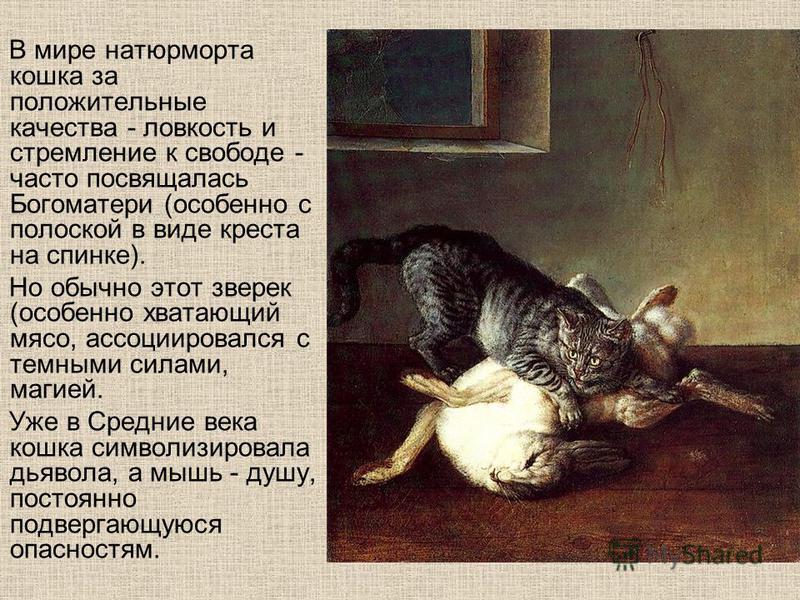 В мире натюрморта кошка за положительные качества - ловкость и стремление к свободе - часто посвящалась Богоматери (особенно с полоской в виде креста на спинке). Но обычно этот зверек (особенно хватающий мясо, ассоциировался с темными силами, магией.