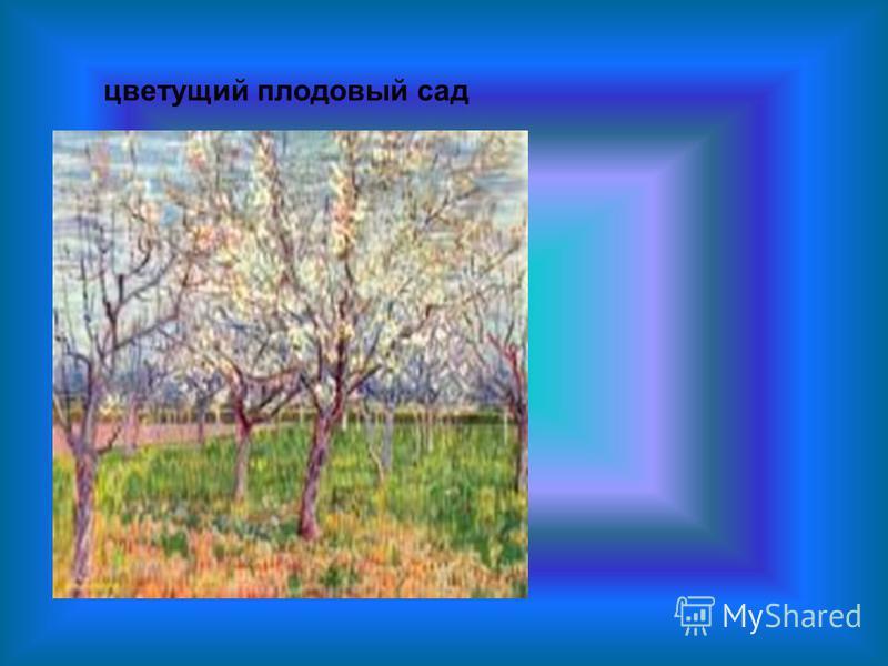 цветущий плодовый сад