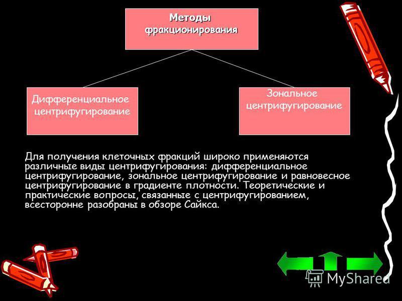 Методыфракционирования Дифференциальное центрифугирование Зональное центрифугирование Для получения клеточных фракций широко применяются различные виды центрифугирования: дифференциальное центрифугирование, зональное центрифугирование и равновесное ц