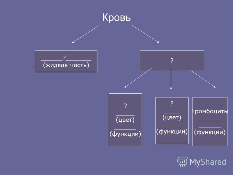 Кровь ______?_______ (жидкая часть) ? ? _____ (цвет) ______ (функции) ? _____ (цвет) ______ (функции) Тромбоциты ______ (функции)
