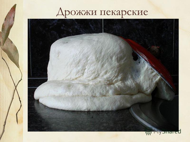 Дрожжи пекарские