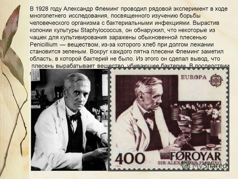 В 1928 году Александр Флеминг проводил рядовой эксперимент в ходе многолетнего исследования, посвященного изучению борьбы человеческого организма с бактериальными инфекциями. Вырастив колонии культуры Staphylococcus, он обнаружил, что некоторые из ча