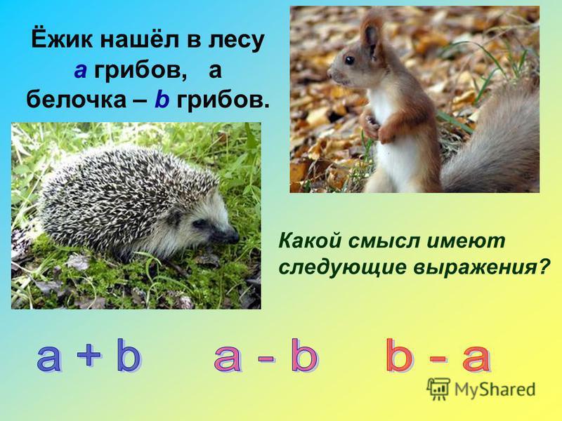 Ёжик нашёл в лесу а грибов, а белочка – b грибов. Какой смысл имеют следующие выражения?