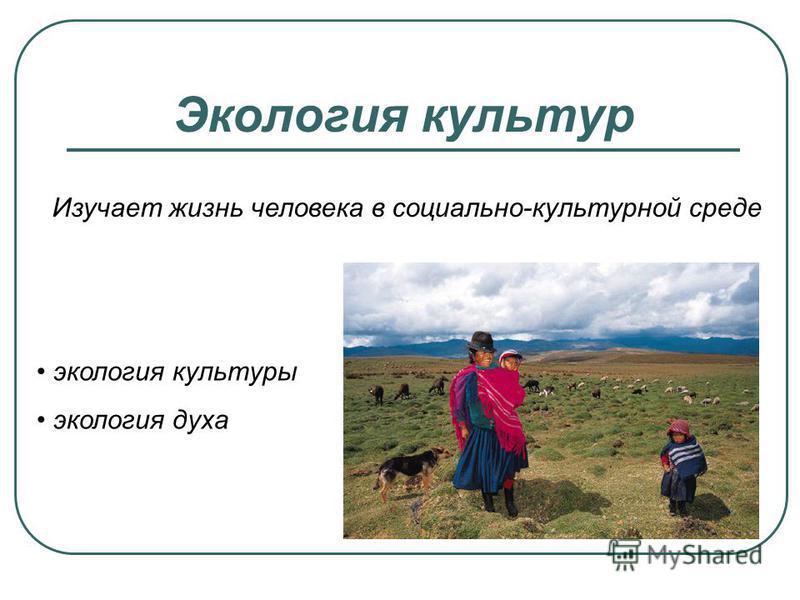Экология культур Изучает жизнь человека в социально-культурной среде экология культуры экология духа