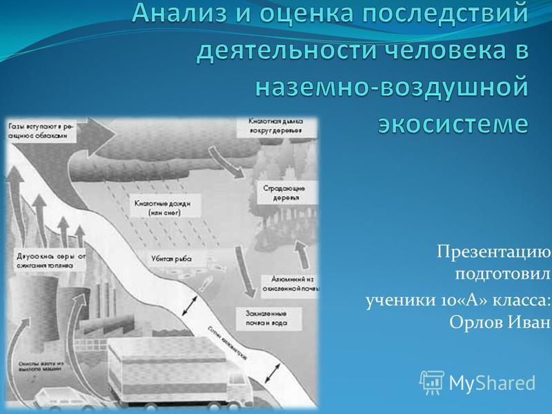 Презентацию подготовил ученики 10«А» класса: Орлов Иван
