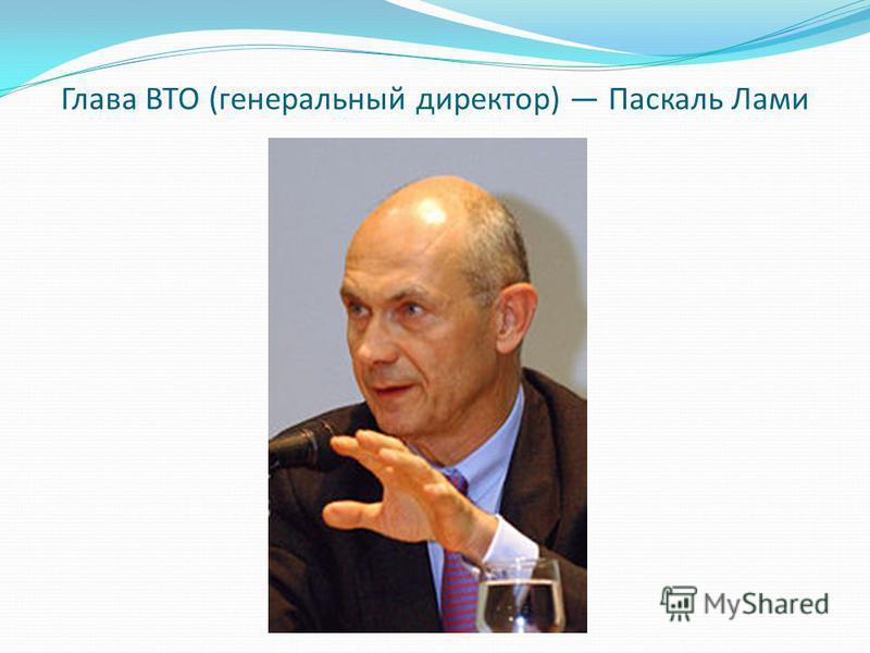 Глава ВТО (генеральный директор) Паскаль Лами