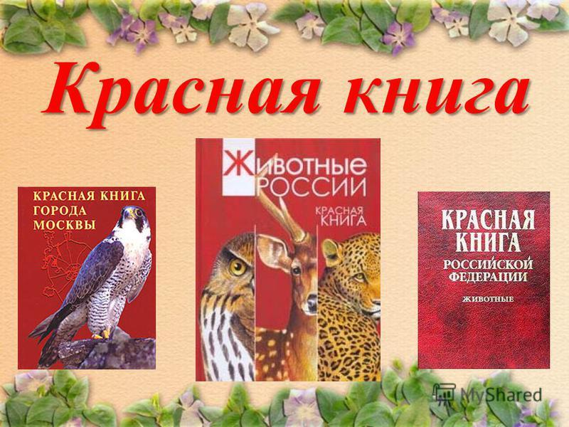 Краснаякнига Красная книга