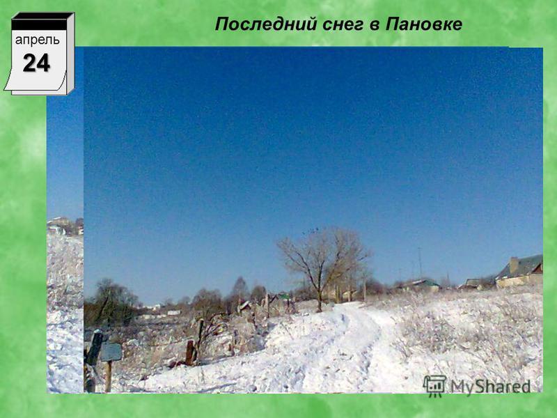 Последний снег в Пановке апрель 24
