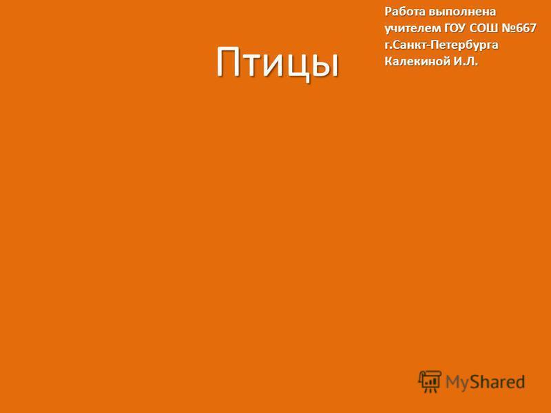 Птицы Работа выполнена учителем ГОУ СОШ 667 г.Санкт-Петербурга Калекиной И.Л.