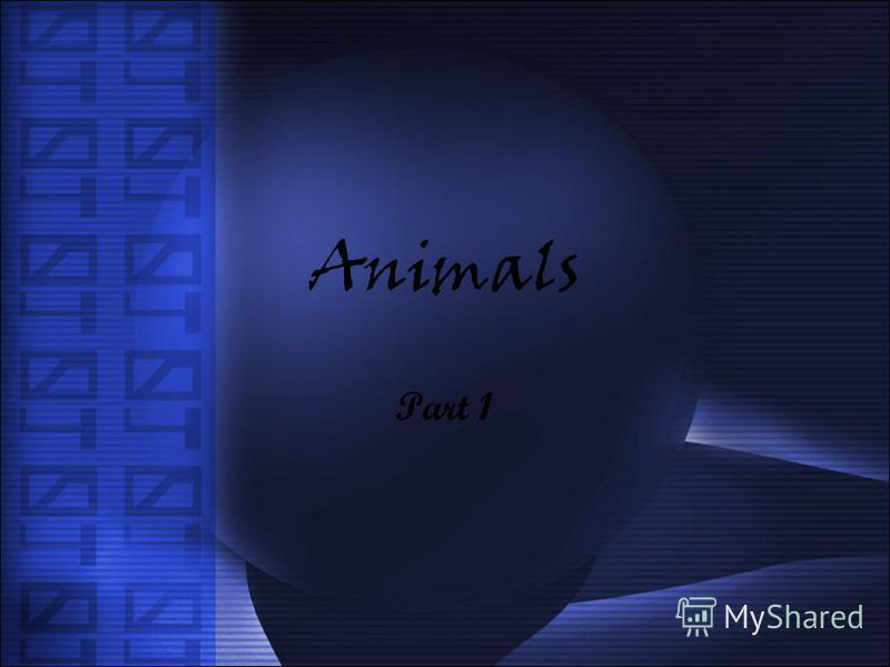 Animals Part 1