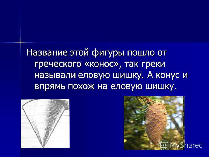 Название этой фигуры пошло от греческого «конус», так греки называли еловую шишку. А конус и впрямь похож на еловую шишку.