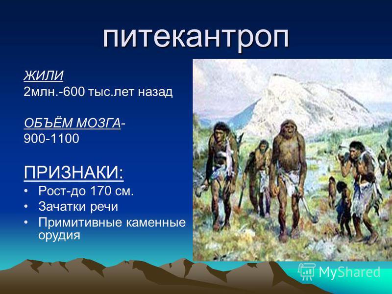 питекантроп ЖИЛИ 2 млн.-600 тыс.лет назад ОБЪЁМ МОЗГА- 900-1100 ПРИЗНАКИ: Рост-до 170 см. Зачатки речи Примитивные каменные орудия
