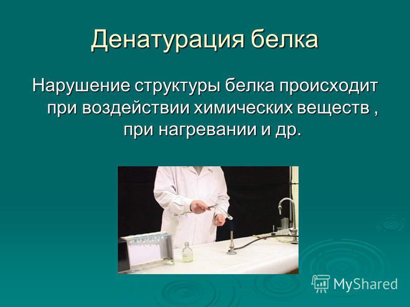 Денатурация белка Нарушение структуры белка происходит при воздействии химических веществ, при нагревании и др.