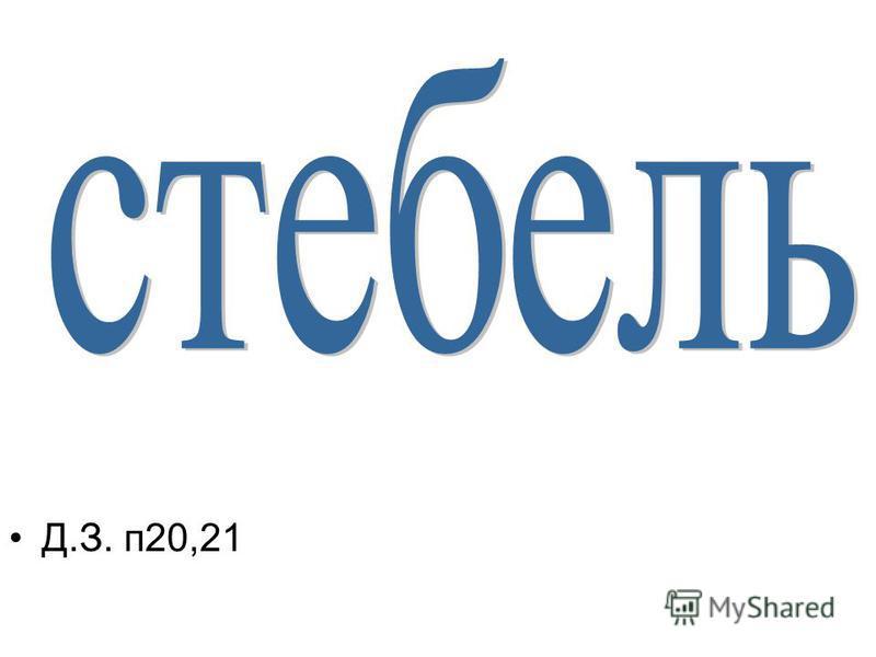 Д.З. п 20,21